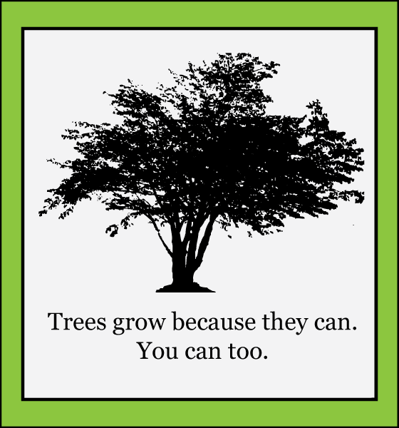 trees grow because they can