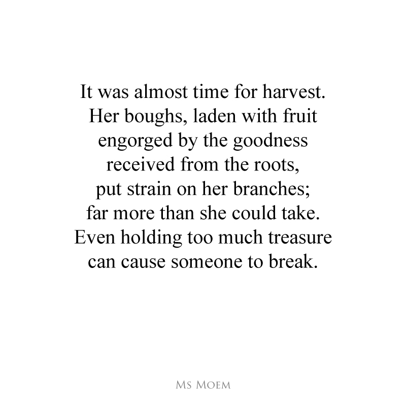 broken branches poem by Ms Moem @msmoem